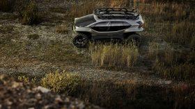Audi AI TRAIL quattro 2019 24