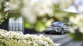 BMW Serie 8 Gran Coupe Exteriores 2019 37