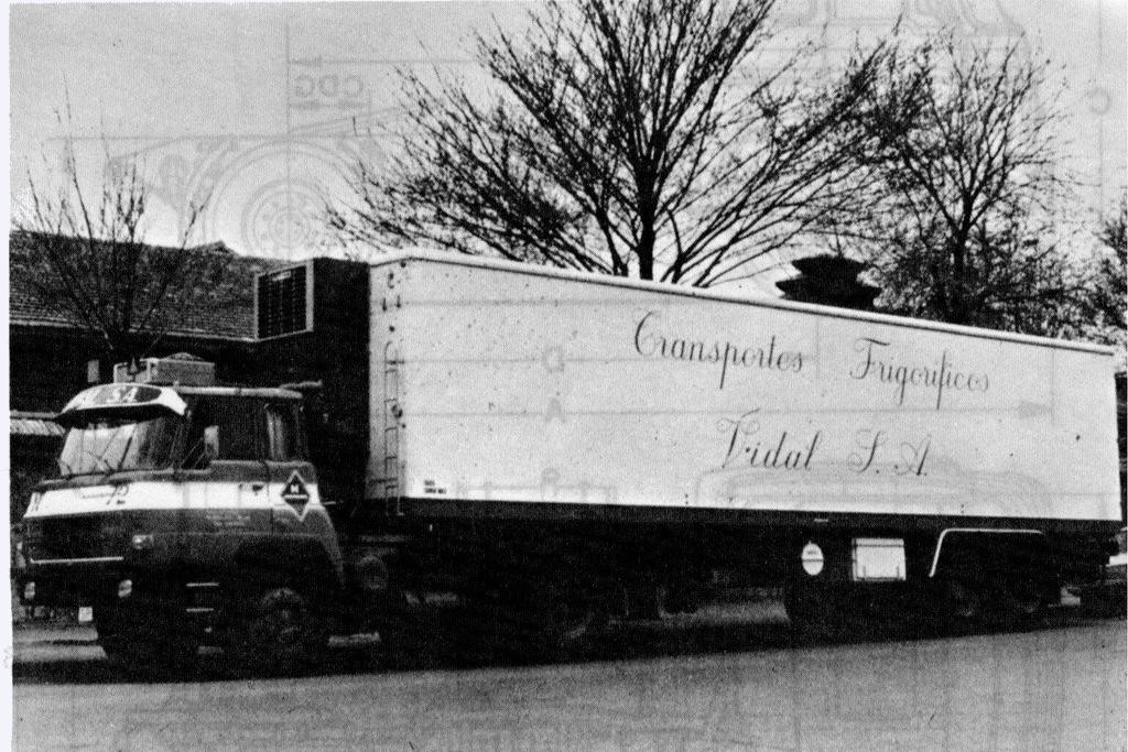 Camion Barreiros 4238t