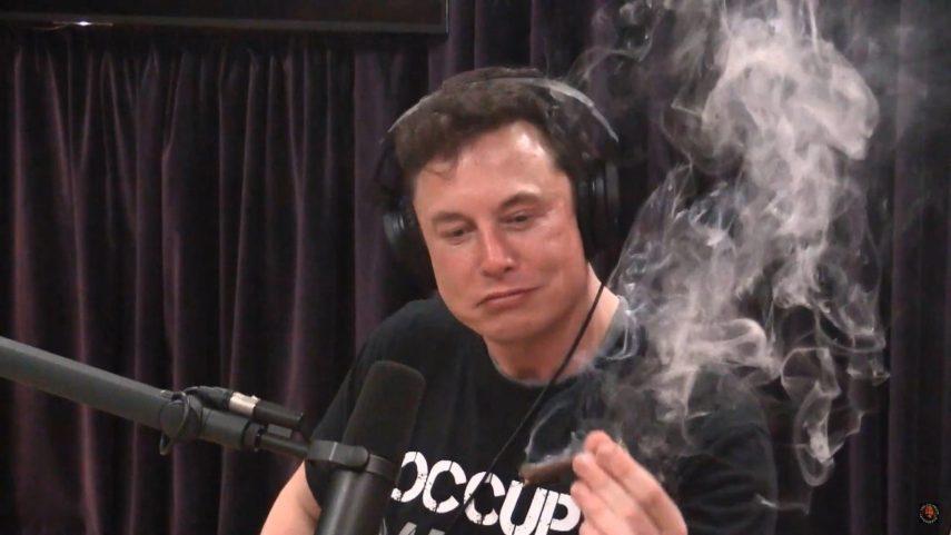 Hierba, whiskey y Elon Musk. ¿Qué puede salir mal?