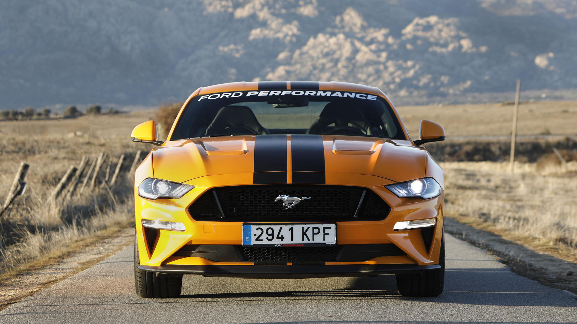 Ford Mustang Performance 3