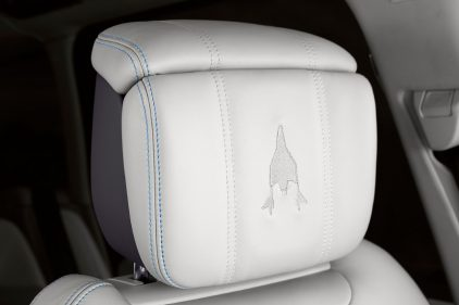 Range Rover Astronaut Edition 5