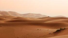 Dust Race (27)