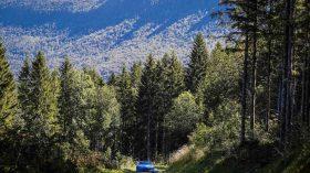 Alpine A110 Rally (12)