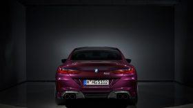 BMW Serie 8 Gran Coupe 2020 Exterior Estudio (28)