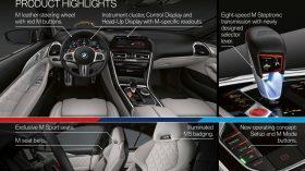 BMW Serie 8 Gran Coupe 2020 Ficha (4)