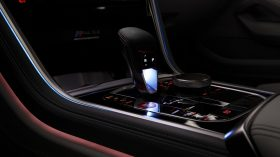 BMW Serie 8 Gran Coupe 2020 Interior Estudio (9)