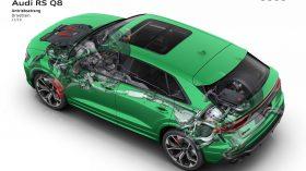 Audi RS Q8 (48)