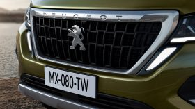 Peugeot Landtrek 2020 (8)
