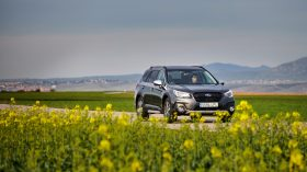 Subaru Outback Silver Edition (5)