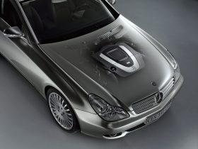Mercedes Benz CLS 350 CGI C219 5