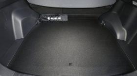 Suzuki Across 2020 088