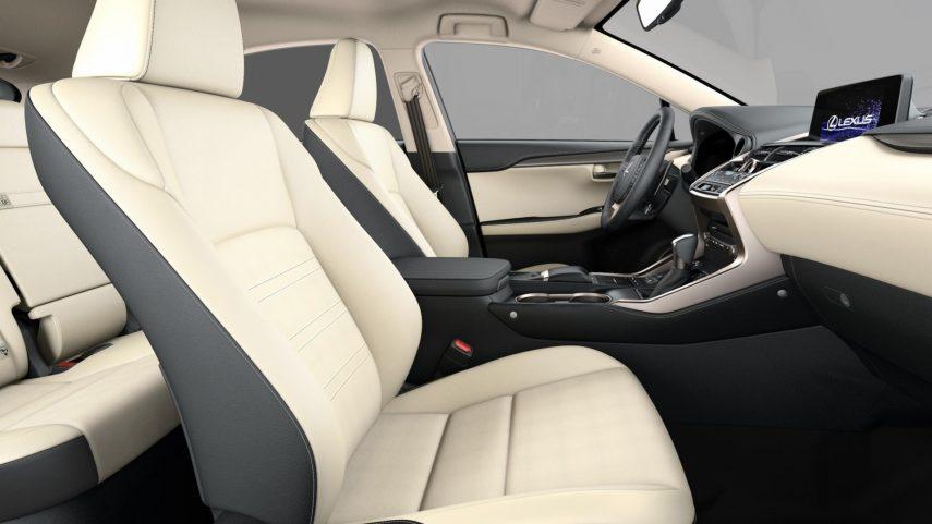 Lexus NX 300h 2021 (3)