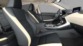 Lexus NX 300h 2021 (4)