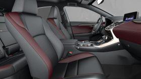 Lexus NX 300h 2021 (5)
