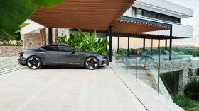 Audi RS e tron GT 2021 (14)