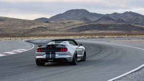 2021 Ford Mustang Shelby Super Snake Speedster (11)