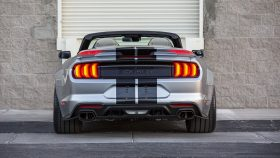 2021 Ford Mustang Shelby Super Snake Speedster (15)