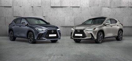 Lexus NX 2022 (1)