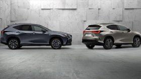 Lexus NX 2022 (2)