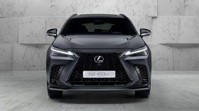 Lexus NX 450h 2022 (11)