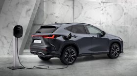 Lexus NX 450h 2022 (5)